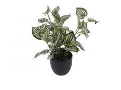 Kuntstplant Zebrina Sunshine In Pot Green/White 25Cm