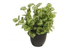 Kunstplant Zebrina Sunshine In Pot Groen/Wit