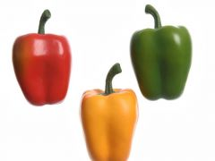 Polyfoam Capsicum 3Col Ass Assorted Dia8X12Cm