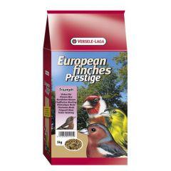 Prestige Inlandse vogels Rui