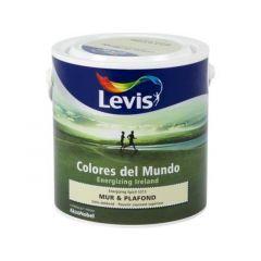 Levis Colores del Mundo Mur & Plafond Energizing Spirit Mat 2,5L