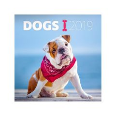 Kalender Dogs 30X30