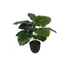 Kunstplant Alocasia Sunshine In Pot Groen