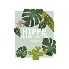 Camelleri | Hippe Huisplanten