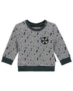 Noppies W18 B Sweater Ls Vernal Aop