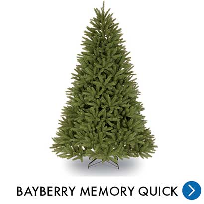 Kerst - Bayberry Memory Quick