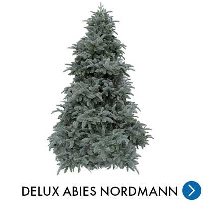 Kerst - Delux Abies Nordmann