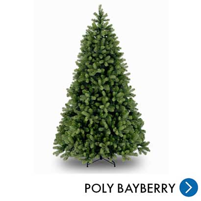 Kerst - Poly Bayberry