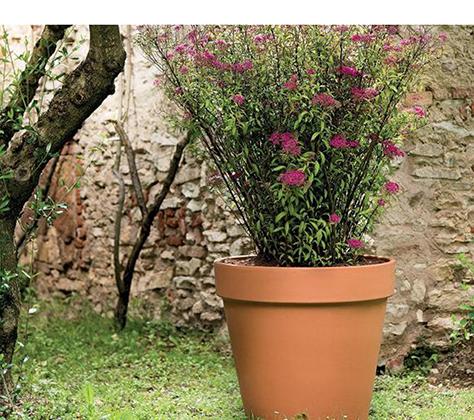 Bloempot Terracotta
